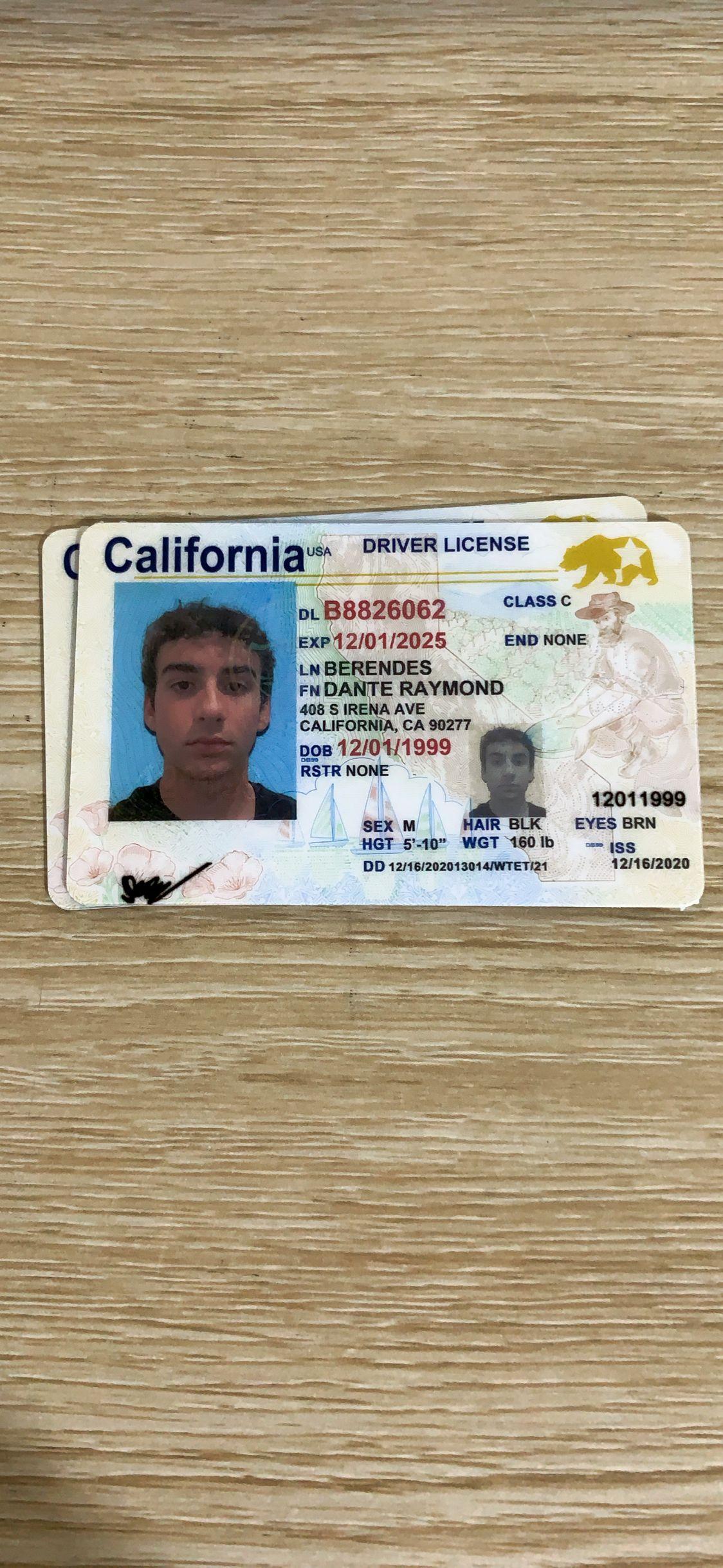 california fake id sample